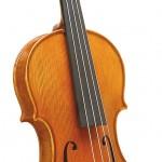 Violine009