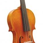 Violine010